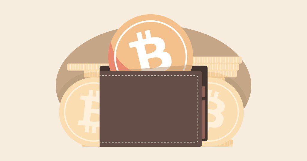 BTC brown wallet