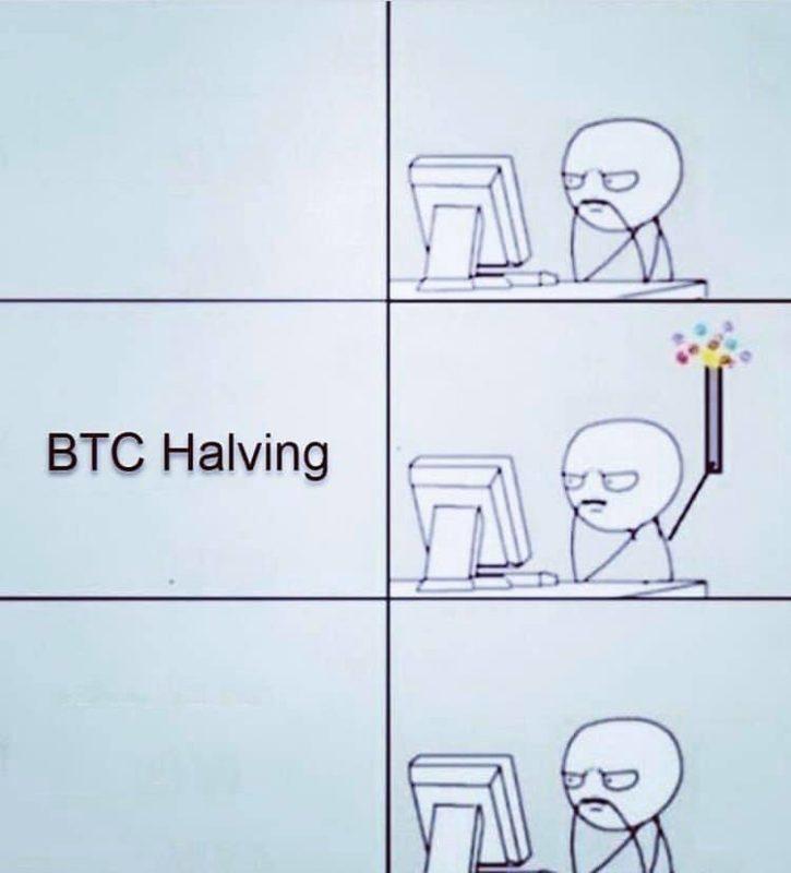 BTC Halving celebration