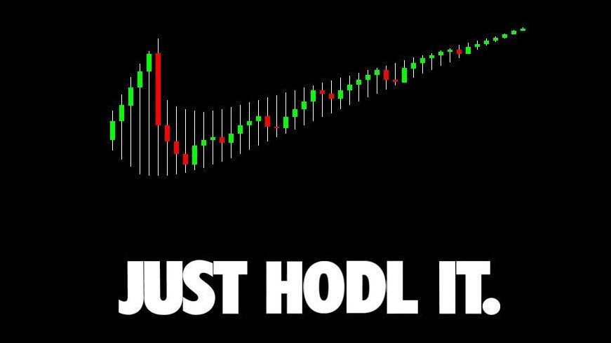 Just hodl it logo